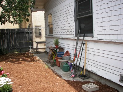 backyard-after1.jpg