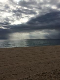 day-10b-walk-with-sandy
