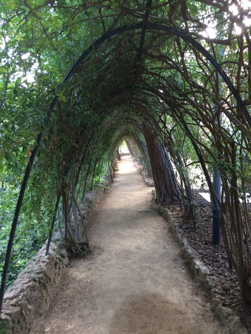 day-11h-parc-guell1-museu-gaudi4