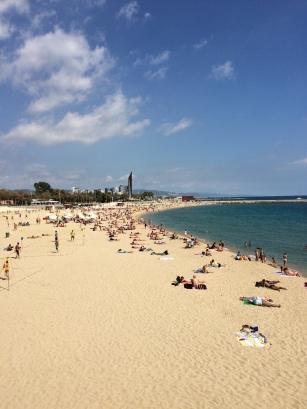 day-6b-el-cangrejo-loco1-la-playa