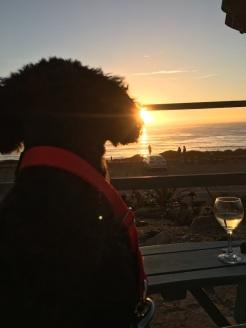 Lulu_sunset